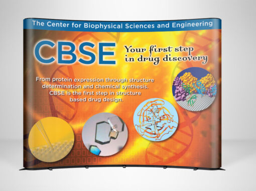 CBSE Display